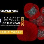 co-hoi-tham-gia-cuoc-thi-olympus-image-of-the-year-award-2020