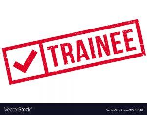 thuc-tap-sinh-co-luong-tai-nghi-vien-chau-au-schuman-traineeships-program-2020